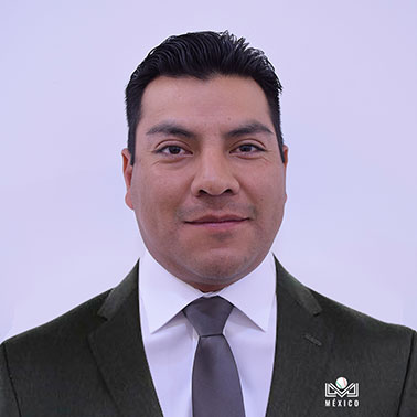 Ulises Domínguez Solís